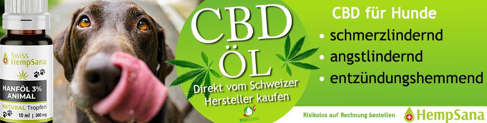 Schweizer CBD Öl für Hunde