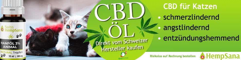 Schweizer CBD Öl für Katzen