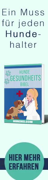 Hunde Gesundheits Bibel