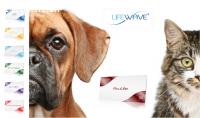 Liefewave für Mensch und Hunde Akupunktur ohne Nadeln